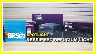 Spotlight on the Kessil H80, 380 and H1200 refugium lights | BRStv