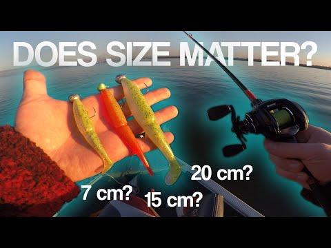 Hvilken størrelse jig skal man bruge til sandart?