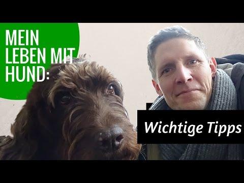 Singletreff aschaffenburg