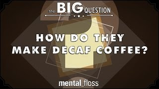How Do They Make Decaf Coffee? - Big Questions - (Ep.1)