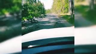 Выксавкурсе.рф: последствия урагана в Выксе