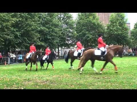 Paardenfokdag 2010 - Ponyclub Saxe Gotha - carousel 12 pony's
