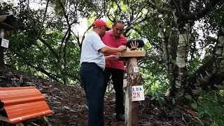 preview picture of video 'Kebun Kelulut Kapit Sarawak (madu kelulut tulen)'