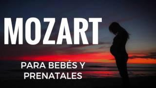 Mozart para Bebés y Prenatales (vientre materno) - Efecto Mozart - Música Clásica para Dormir Bebés