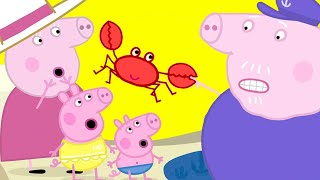 Peppa Pig Official Channel 🦀 Peppa Pig at the Rock Pools