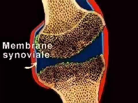 Warum Schwangerschaft schmerzende Gelenke der Hände und Füße