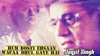 Hum Dosti Ehsaan Wafaa Bhul Gaye Hain   Jagjit Singh