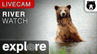River Bear Watch - Katmai National Park, Alaska powered by EXPLORE.ORG