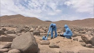 Atacama desert could hold secrets of life on Mars