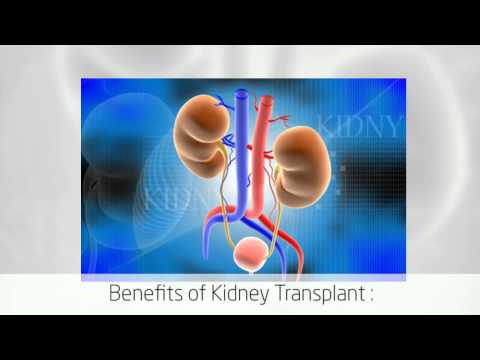 Renal Transplant Surgery in Bangalore India