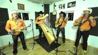 Conjunto De Arpa Grande (Las Medias Negras) Jilgueros Michoacános 2013