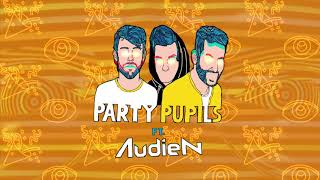 Party Pupils   This Is How We Do It (feat. Audien)