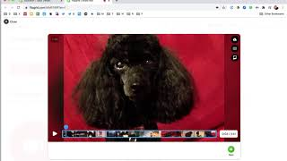 Combining Multiple Video Clips Using Flipgrid (plus trim & reorder clips)