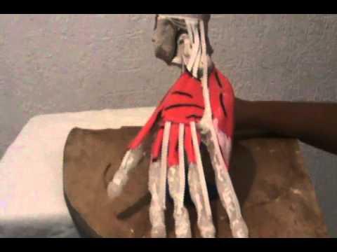 Tratamiento Obninsk de las articulaciones