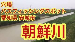 朝鮮川穴場バス釣りポイント愛知県安城市