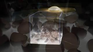 Listen - SUPERPROTEIC O... di Salvatore Cammilleri - Ambiente sonoro di Mauro Bagella e Lisa Monna