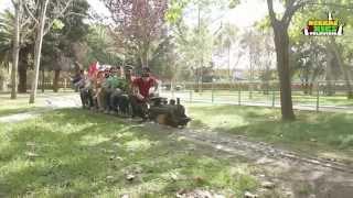 The Penguins - El Tren Pinxo De Banyoles