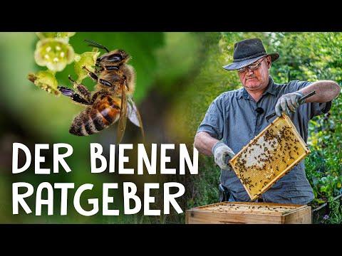 , title : 'Bienen halten im eigenen Garten! 🐝 - Grundkenntnisse und Einführung in die Imkerei