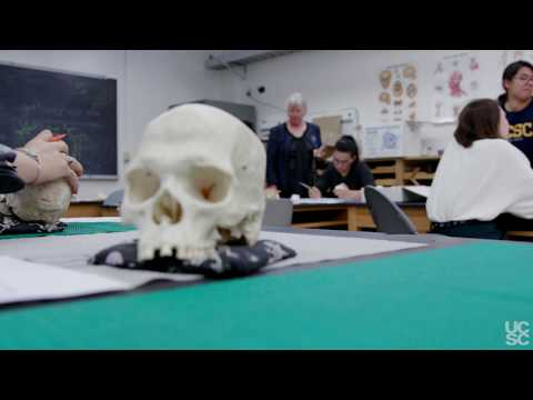 ANTH 103I - Forensic Anthropology - Alison Galloway - UCSC ...