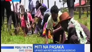 Mbiu ya KTN: Upanzi wa miti wafanywa Kericho