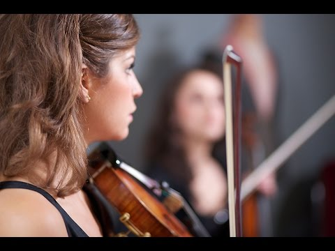 Fields of Gold - Sting - Stringspace String Quartet cover