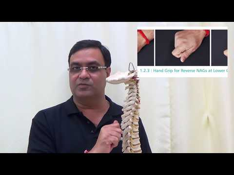 Cura di ernia di unagopuntura di spina dorsale