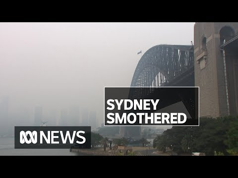 Calls for government to warn people about dangerous spikes in air pollution   ABC News