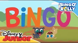 Bingo y Rolly: Canciones Infantiles - Bingo | Disney Junior Oficial