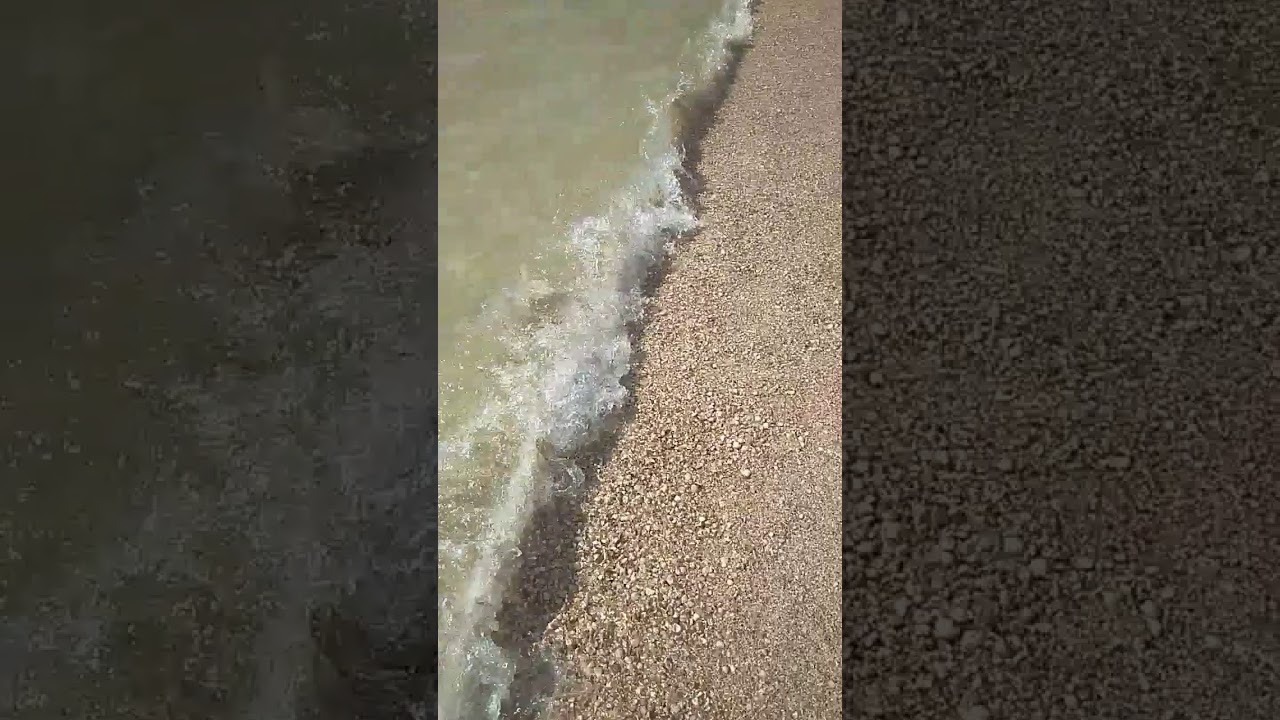 Азовское море снова атаковали медузы - Фото 1