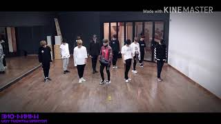 [Dance Mirrored] WANNA ONE - BEAUTIFUL