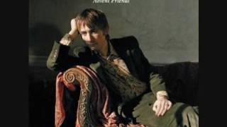 THE DIVINE COMEDY   Our mutual Friend