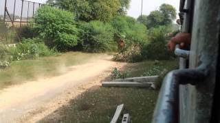 Wagha border to attari border via train