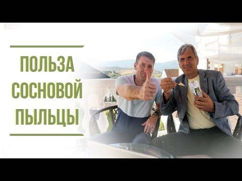Польза сосновой пыльцы | Крымский центр оздоровления Неумывакина