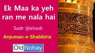 preview picture of video 'Ek Maa ka yeh ran me nala hai - Old Nauha from Lucknow'