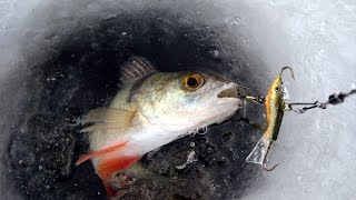 Как настроить балансир для зимней рыбалки
