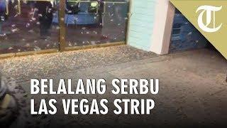 Viral Video, Serbuan Belalang di Jalan hingga Rumah Warga Las Vegas Strip