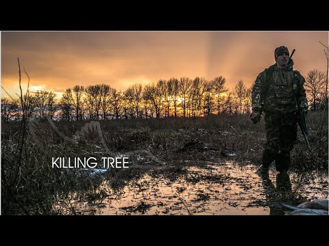 "HW 3.9 ""Killing Tree"""