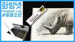 [화방넷 Live] 동물 소묘 그리기, 소묘강좌, 동물 스케치 그리기, 소묘 방법