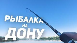 Пенопласт рыбий жир рыбалка