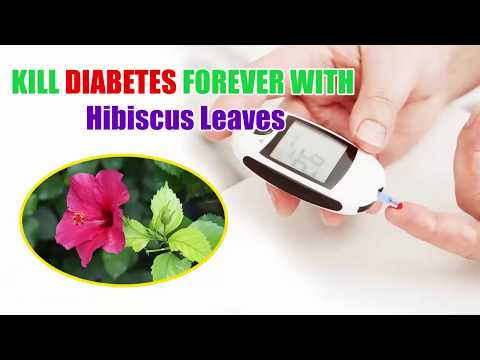 Etiologia diabetului zaharat de tip 1 la adulți
