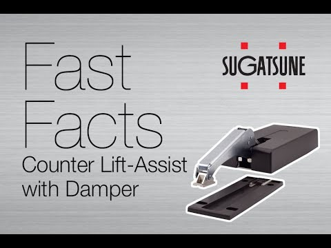 Fast Facts: LADH Series Counter Lift-Assist with Damper