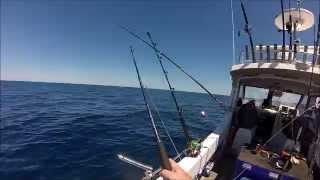 Tuna hooked on Stick Bait - Epic dive to save breaking rod!