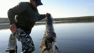 Запрещенные снасти для ловли рыбы в казахстане