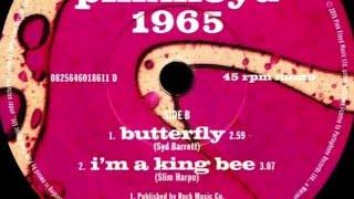 Pink Floyd / Syd Barrett - Butterfly (1965)