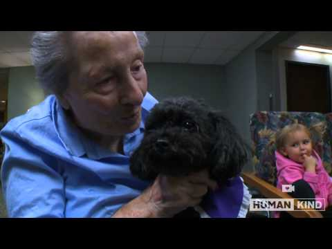 Nala the Poodle Visits Her Friends at the Nursing Home