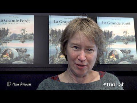Anne Brouillard - Le pays des Chintiens. Volume 1, La grande forêt
