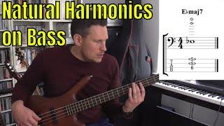 Play Harmonics on Bass Guitar - Part 1: Natural Harmonics - Bass Practice Diary - 11th December 2018