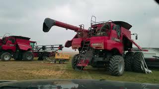 #67-2. Почему фермеры стараются не нанимать работников на второй сезон? Канада глазами украинца.