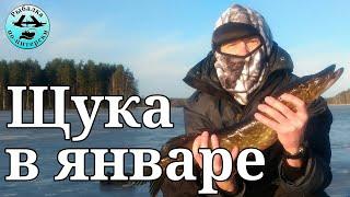 Осень рыбалка на озере вуокса 2020
