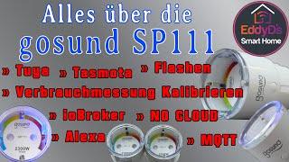Alles über die Gosund SP111 Steckdose [Smart Home, Tasmota, Flashen, Tuya, SmartLife, Alexa, MQTT]